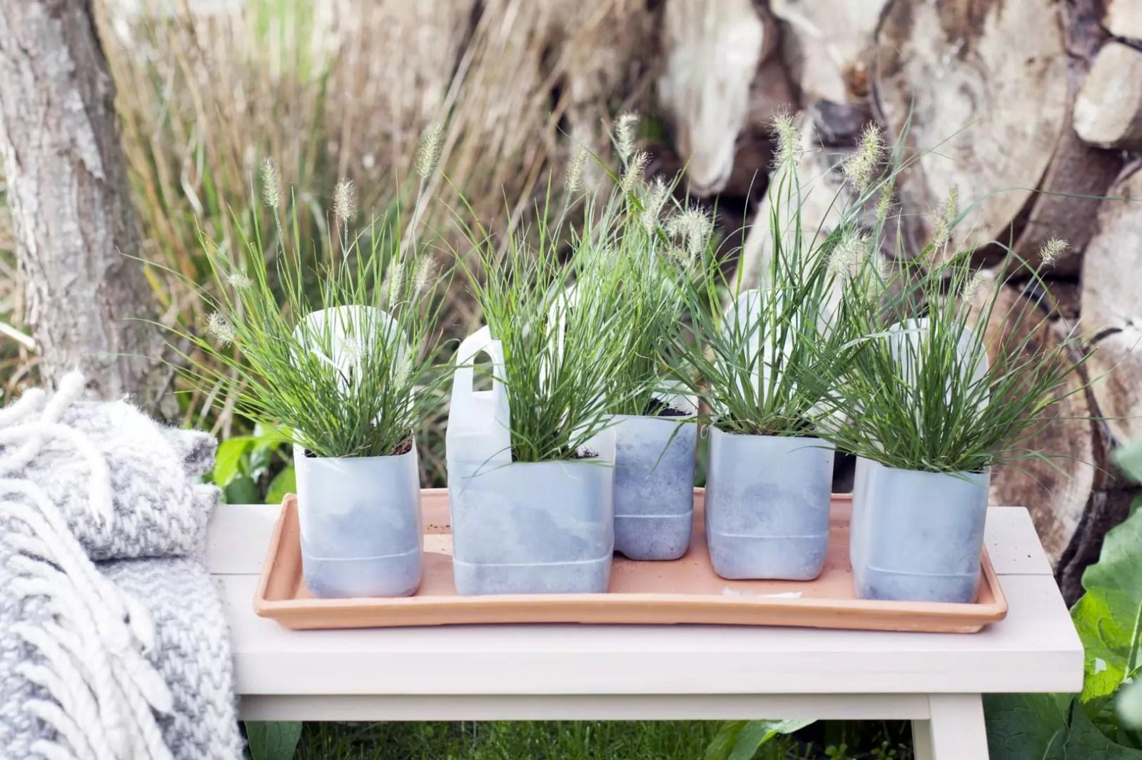 Buitenleven | Siergrassen in de tuin - Borstelveergras = Tuinplant van de Maand september - Woonblog StijlvolStyling.com
