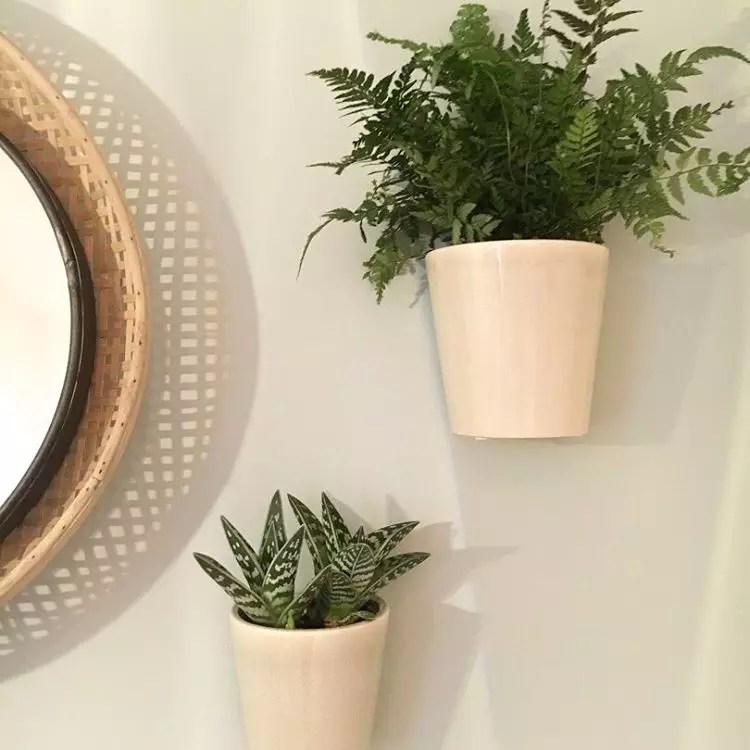 Groen Wonen 10 Hippe Badkamer Planten Voor Een Frisse Look Stijlvol Styling Woonblog Voel Je Thuis