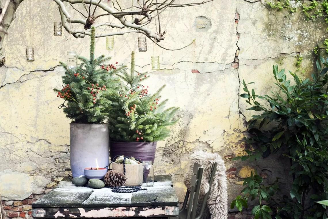 Buitenleven   Het kerstgevoel in de tuin met de Spar - Woonblog StijlvolStyling.com