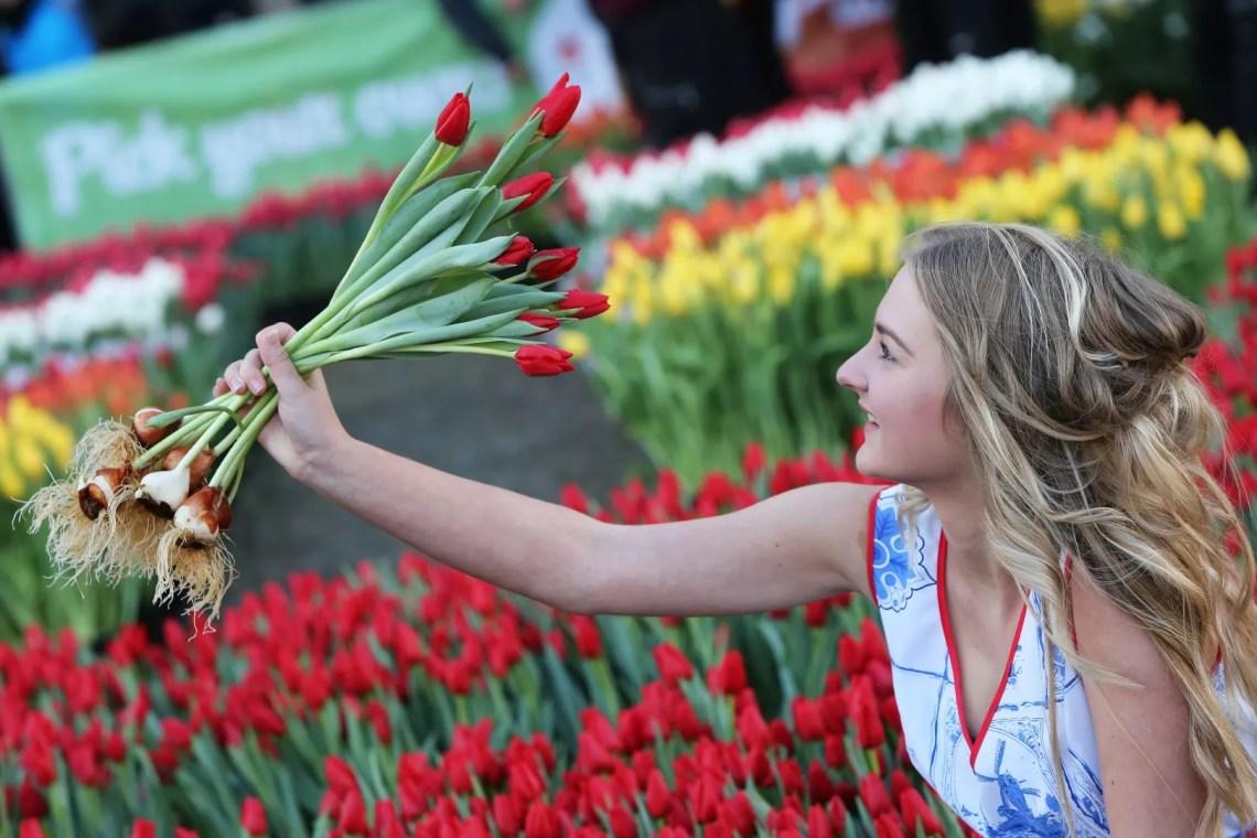 Groen wonen  Tulpen plukken op de Dam - woonblog StijlvolStyling.com