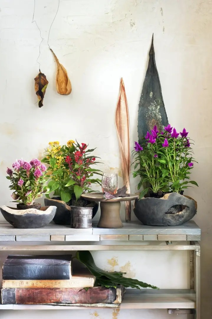 Groen wonen | Binnenstebuiten planten - Woonblog StijlvolStyling.com