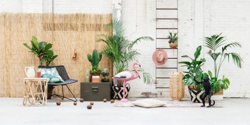 Tuin inspiratie | Tuintrends Tropische jungle in eigen tuin - Woonblog StijlvolStyling.com