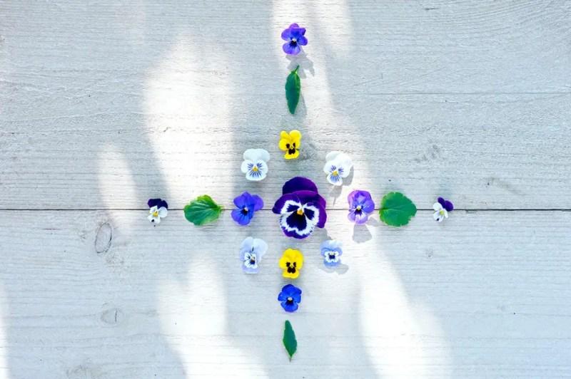 Buitenleven | Viooltje brengt kleur in de tuin of balkon - Woonblog StijlvolStyling.com