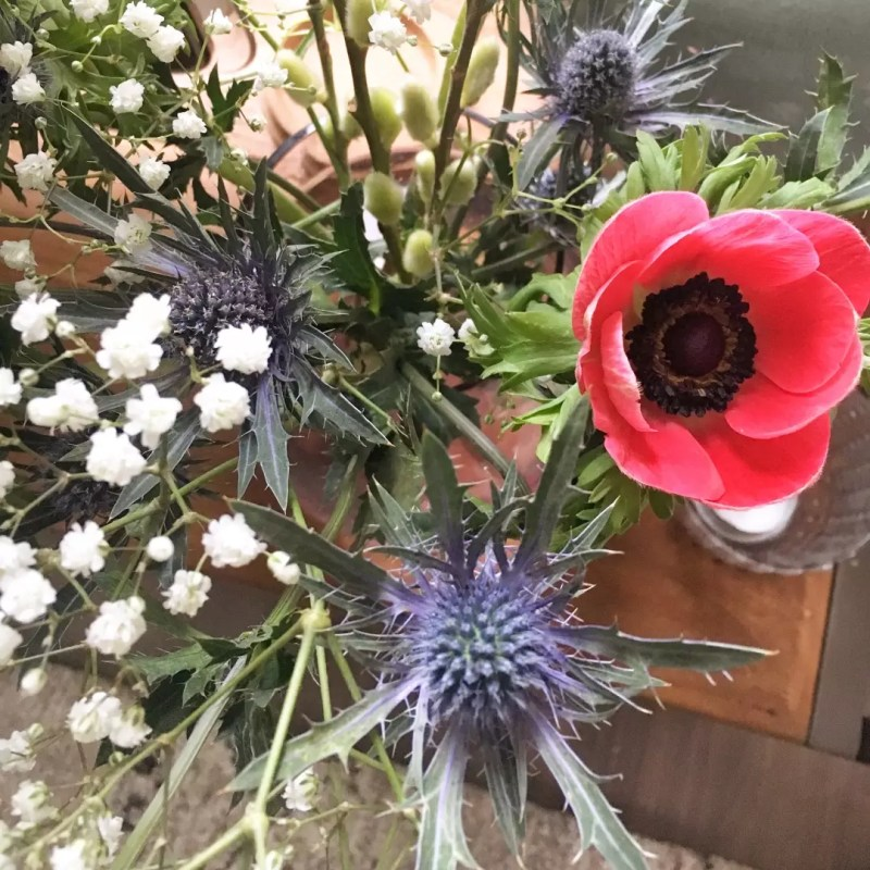 Groen wonen | 'In the mood for love' met deze 5 bloemen - Lifestyle- & woonblog StijlvolStyling.com