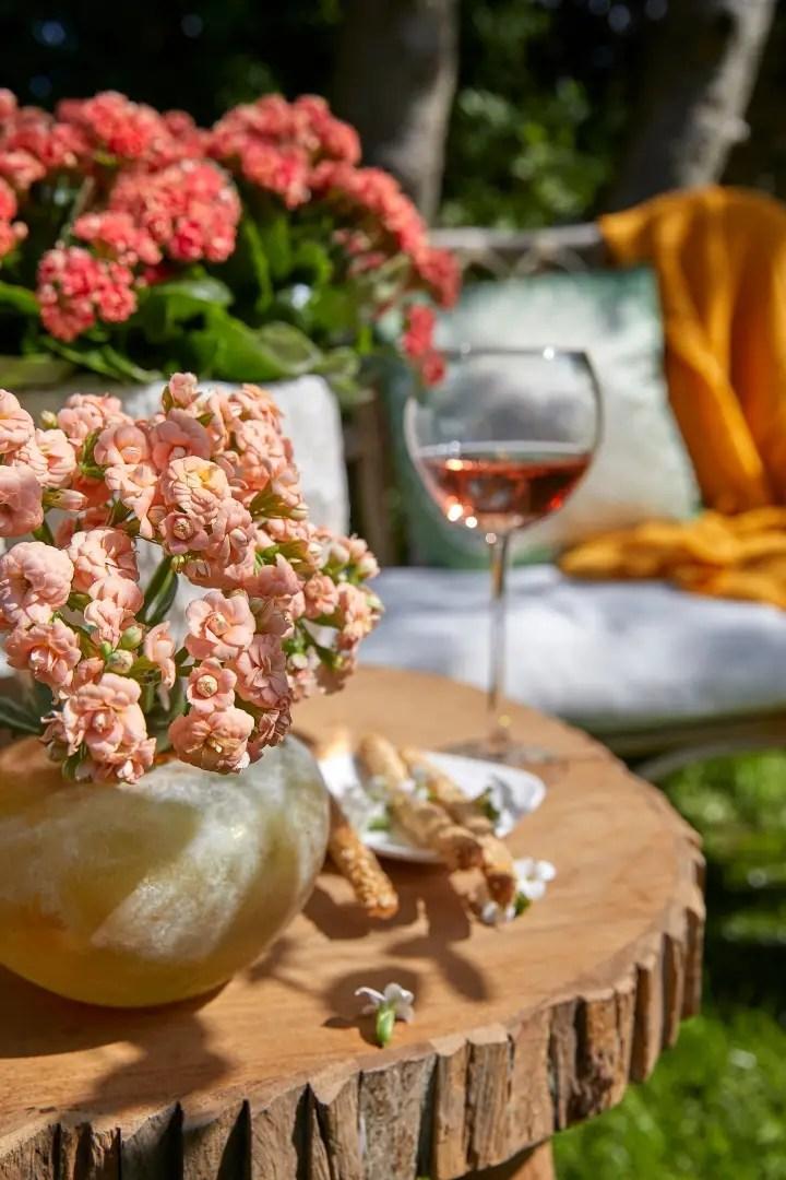 Tuin inspiratie | Makkelijke kleurrijke terras planten - Lifestyle & woonblog StijlvolStyling.com (beeld: Always Kalanchoe)