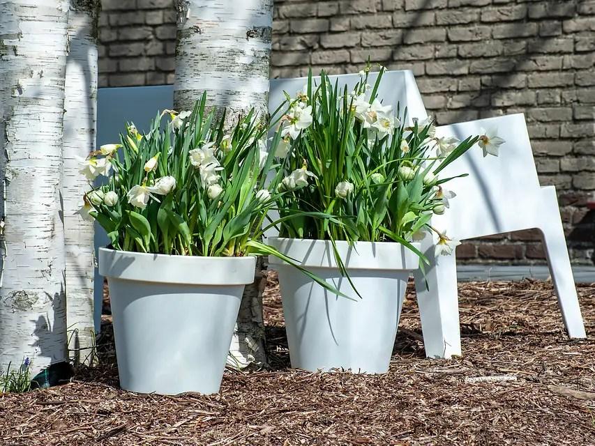 Tuin inspiratie   Bollen-op-pot; blij makers pur sang - woonblog StijlvolStyling.com door SBZ Interieur Design (photo credits: iBulb)