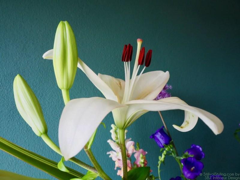 Groen wonen   De mooiste plekken in je huis voor bloemen - Bloomon in samenwerking met StijlvolStyling.com by Susanne - SBZ Interieur Design