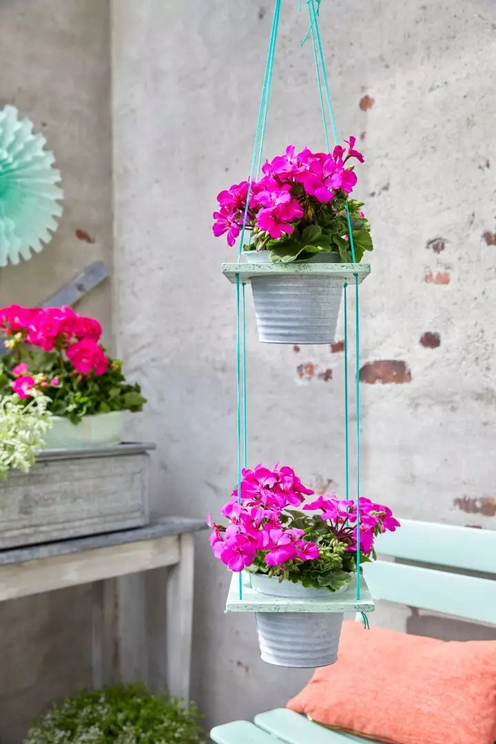Buitenleven | DIY - Kleur in de lucht met Geraniums - StijlvolStyling.com - Fotocredit: Pelargonium for Europe (PfE)