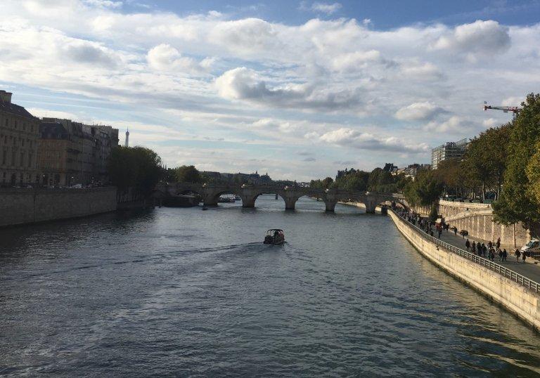 Pont Neuf und Seine