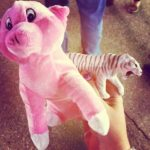 The Adventure of the State Fair Prize Tiger