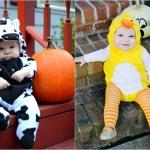 Happy Halloween from My Little Duck