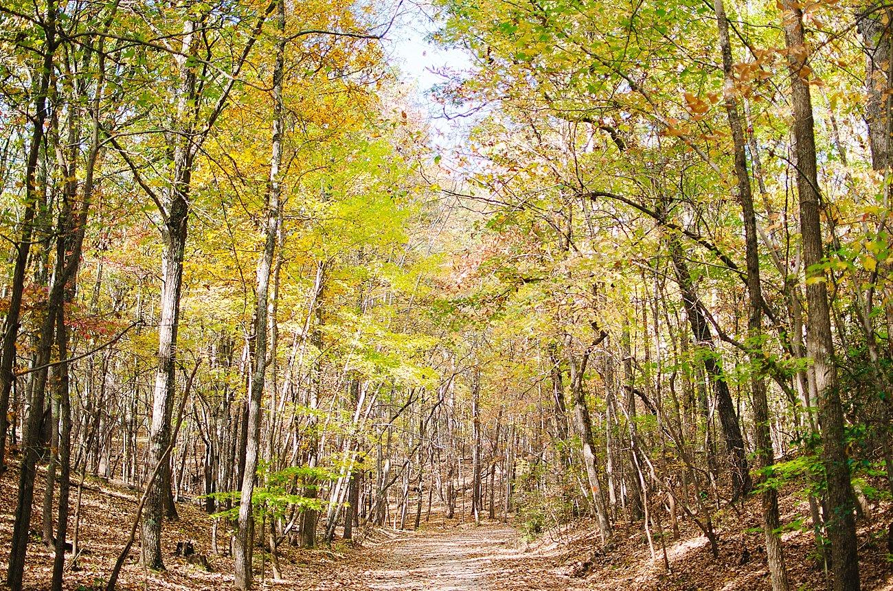 GoHikeNC Occoneechee Mountain Hillsborough Easy, Moderate, Difficult Family Hike (1)