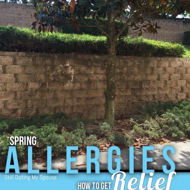 spring Allergies, pollen, Minute Clinic