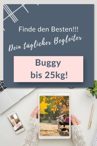 Buggy-bis-25kg