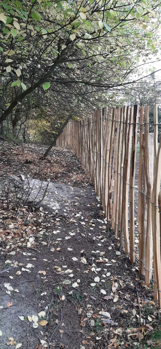plot ze štípaného akátu
