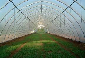 solare-agricole-profesionale