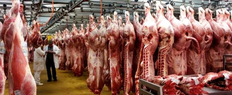 carne-porc