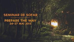 SEMINAR-DE-SOFAR-300x173