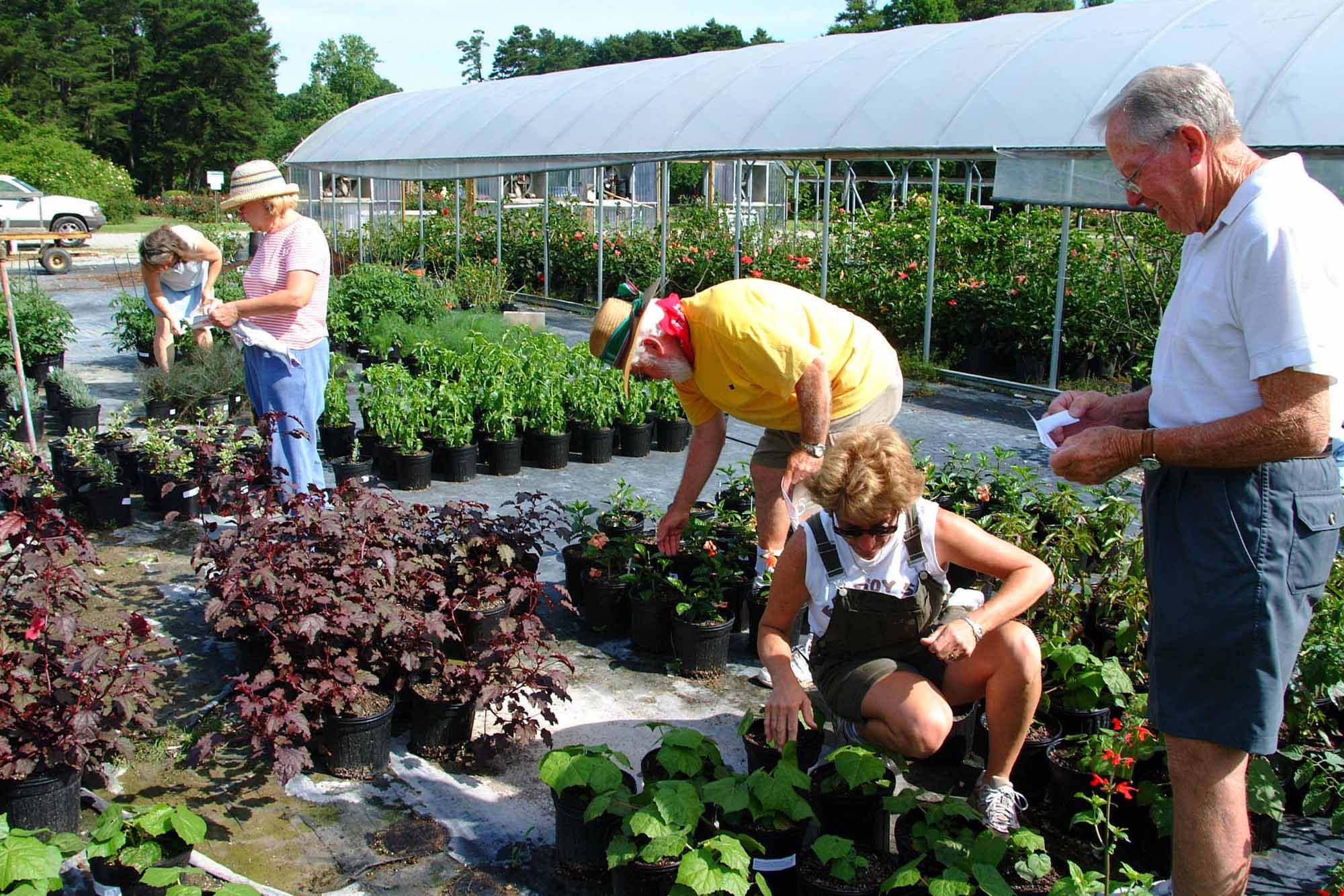 Make Friends By Growing A Garden - Stitch on Gardening  id=44385