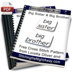 big brother or big sister