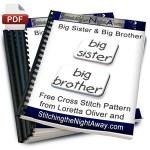 big brother or big sister