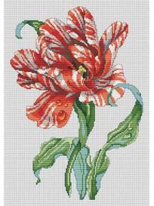 Striped Parrot Tulip Cross Stitch Pattern