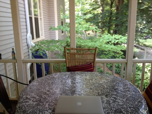 Smith's screened porch.