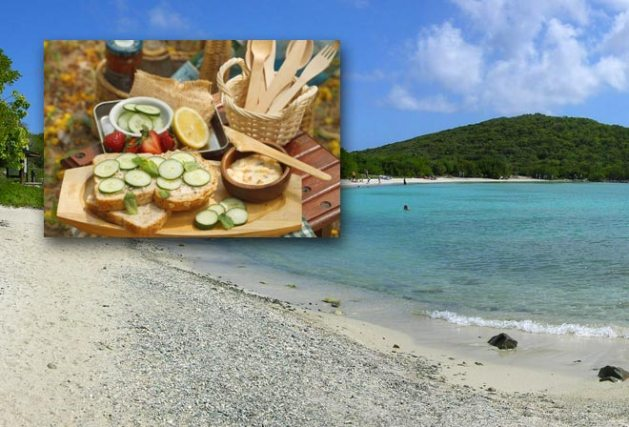 Salt Pond Bay Picnic, St. John, USVI