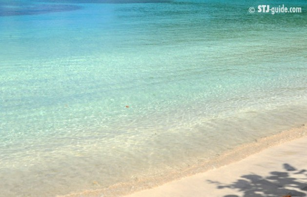 Francis Bay St. John Best Beaches USVI