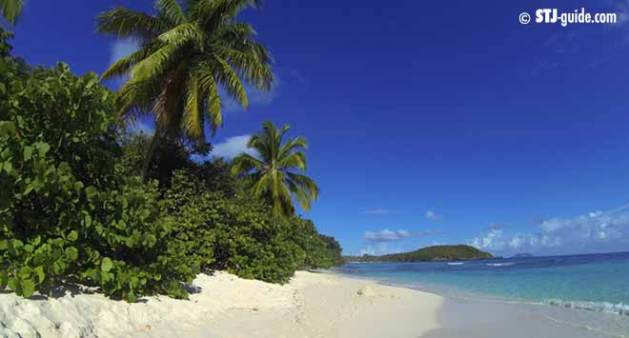 hawksnest-best-beaches-of-stjohn
