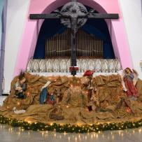 Message of the Christmas Tree – Pope J.P.II