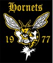 Hornets Rugby