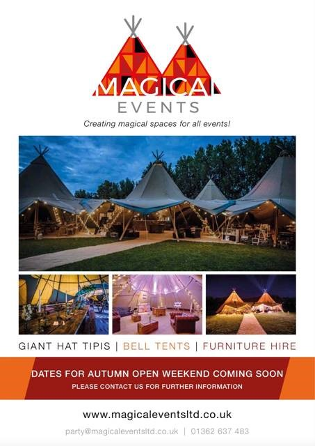 magical camping concert ad