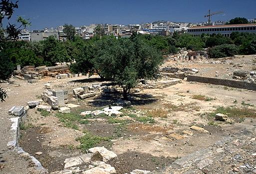 p20060.jpg