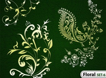 hand-drawn-floral-vector-photoshop-brushes-s6