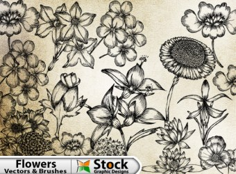 hand-drawn-flowers-free-vector-brush-pack-l