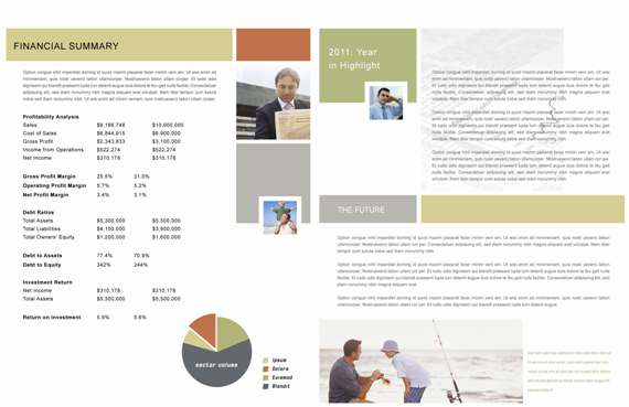 Annual Report Redesign - Pages 4 & 5