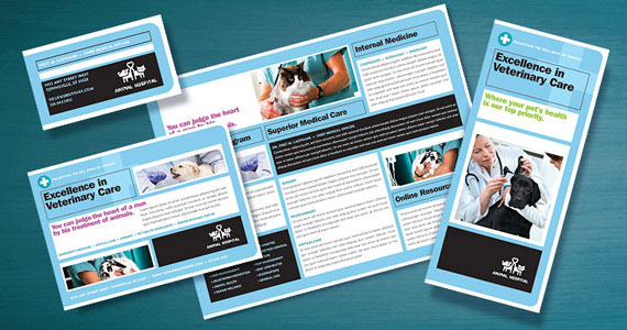 Animal Hospital Brochures, Flyers, Posters