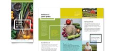 natural organic product flyer