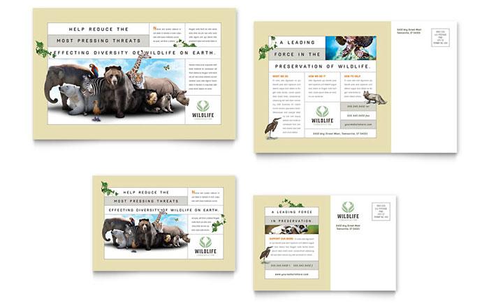 Wildlife Conservation Postcard Design