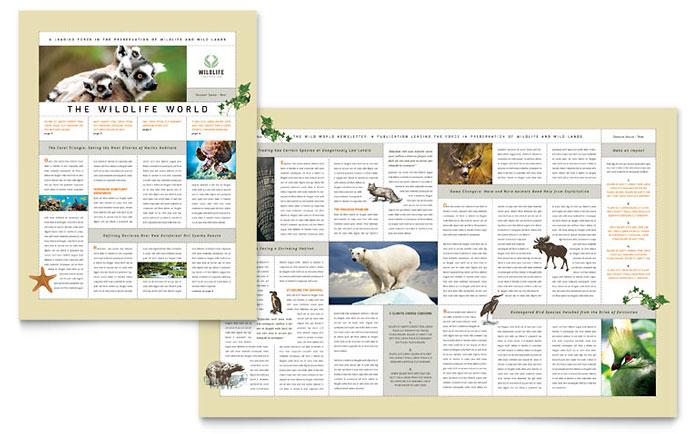 Wildlife Conservation Newsletter Design