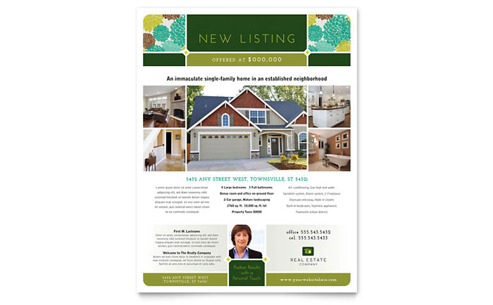 Flyer Example - New Listing