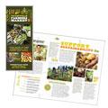Farmers Market Brochure Design