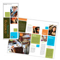 Arts Council & Education Brochure Design