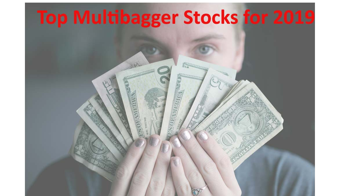 The Top 3 Multibagger Stocks for 2019 in India