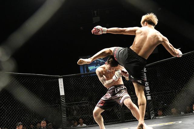 Love Hemp to Gain Worldwide Brand Awareness as UFC's Official Global CBD Partner