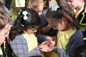 Year Two girls with butterfly