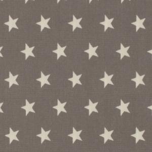 Baumwolle Star Hellgrau