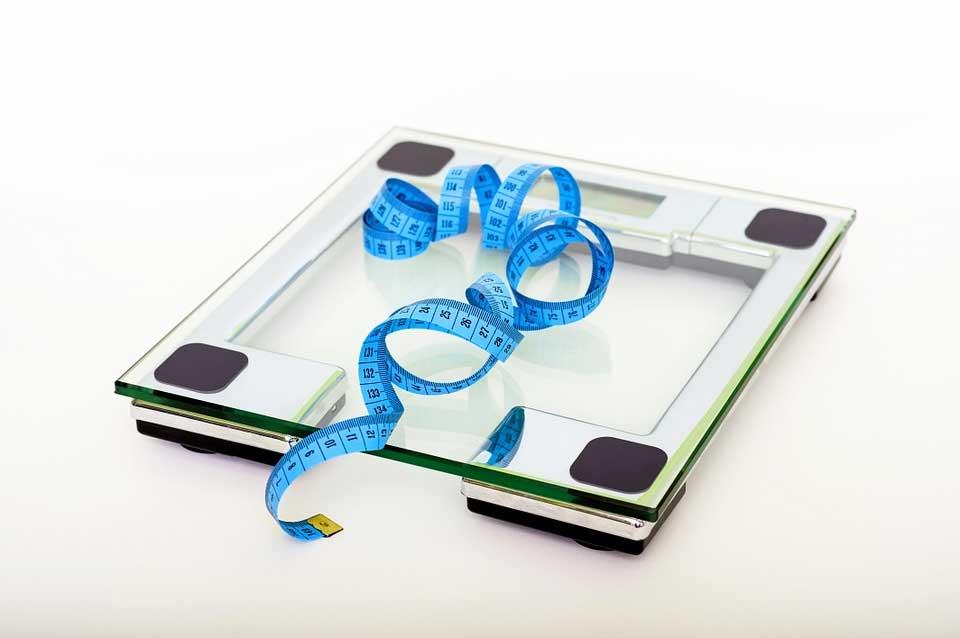 Körper Fett Anteil