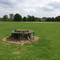 """The Recreation Ground (""""The Rec"""")"""